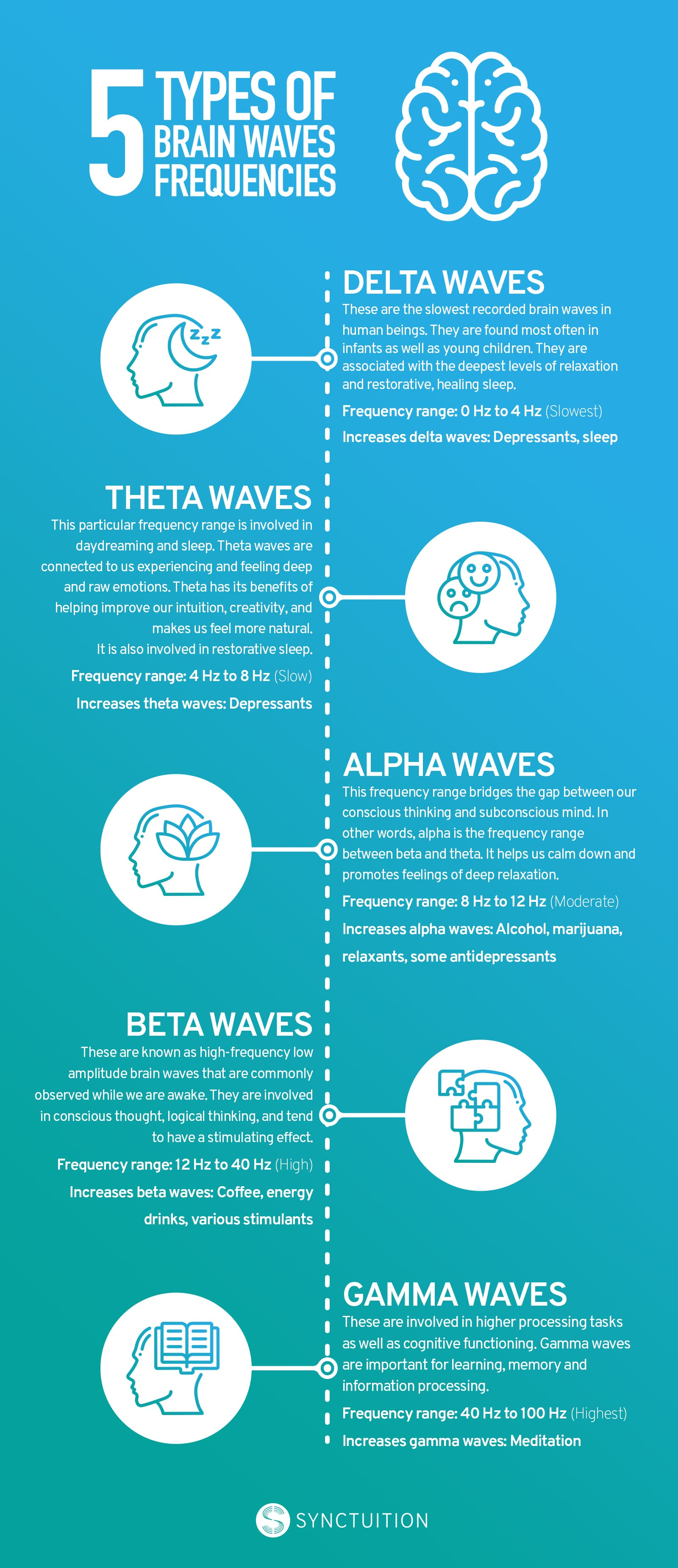 brainwave infographic, alpha, beta, theta, delta, gamma, synctuition