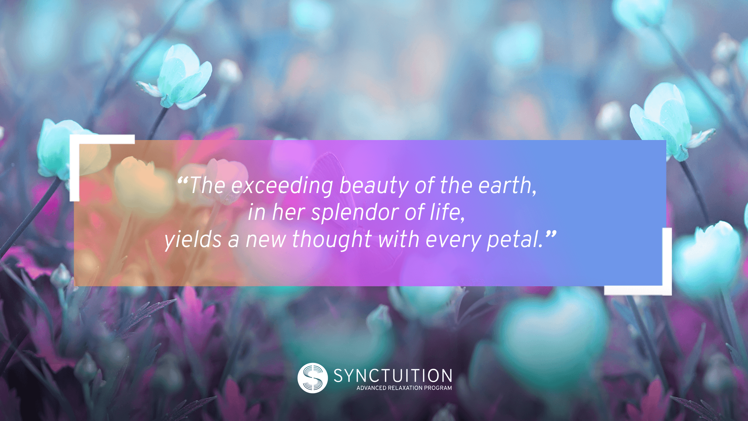 The beauty of nature sounds resonates deep within the mind.